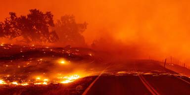 kalifornien2.jpg