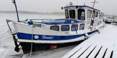 Kälte - Eis auf der Donau