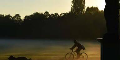 Ein Fahrradfahrer genießt mit seinem Hund in Kassel den nebeligen Herbst