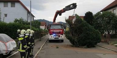 Sturmschäden in Knittelfeld