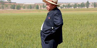 Nordkoreas Diktator Kim Jong-un beim Besuch einer Farm