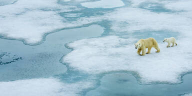 Erderwärmung: Meeresspiegel wird definitv steigen