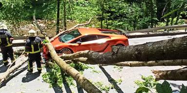 Stubenbergklamm: Baum stürzt auf Lamborghini