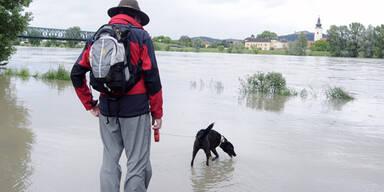 Hochwasser bei Melk, Wachau