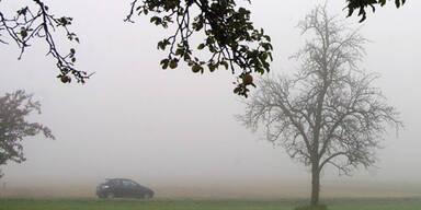 nebel_auto_