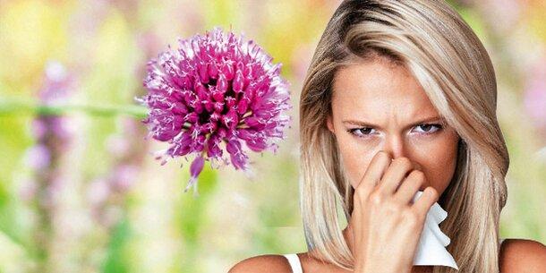 Allergie Wetter