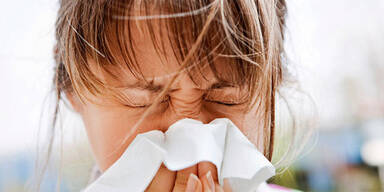 Kopie von pollen3.jpg