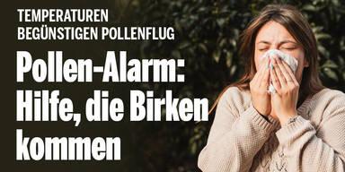 pollen_alarm1.jpg