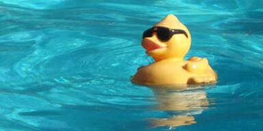 pool_ente_sxc