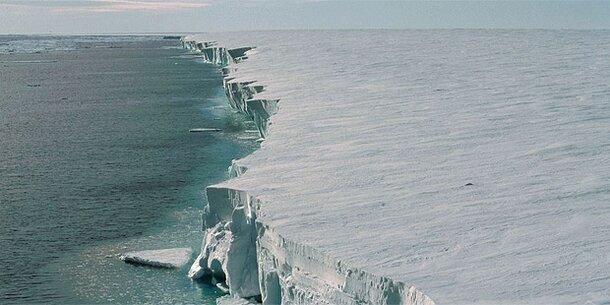 Antarktis: Arktis und Antarktis: 50 Institute arbeiten zusammen