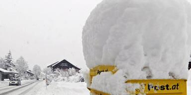 schnee1a.jpg