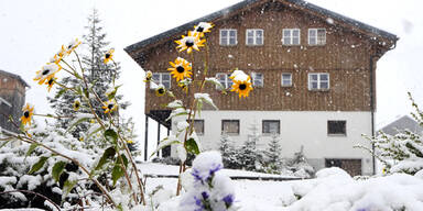 schnee5.jpg