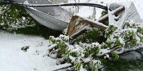 Schnee & Frost: Mehr als 200 Mio. Euro Schaden