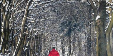 Winter feiert sein Comeback