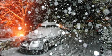 schneefall4.jpg