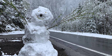 Schnee-Chaos in Österreich: Die besten Bilder