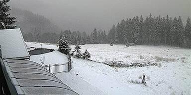 schneeschwarzwald.jpg