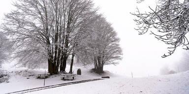 Schnee Winter Schweiz