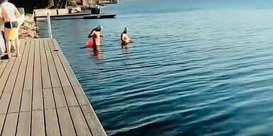 Schwimmer im Februar