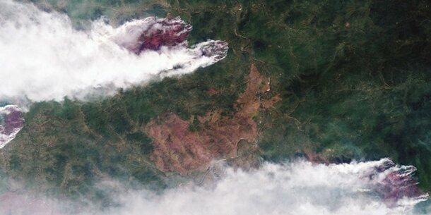 Waldbrände in Sibirien wüten weiter