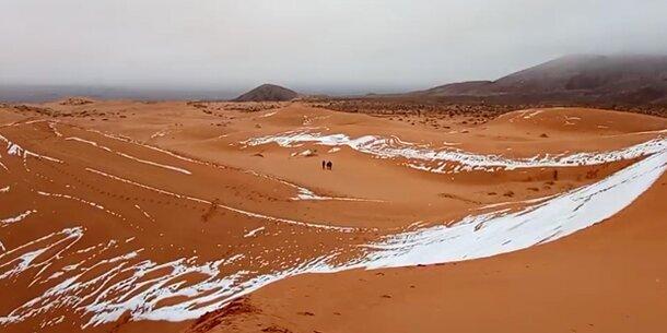 Kälteeinbruch verwandelt die Sahara in ein Winterwunderland