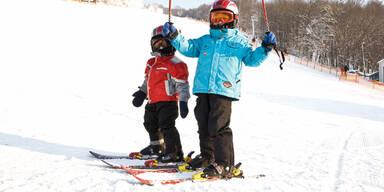 skifahren_singer.jpg