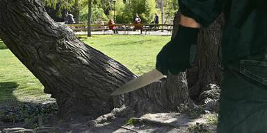 Bursche (19) in Wiener Park niedergestochen