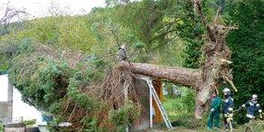 Millionen-Schäden durch Orkan