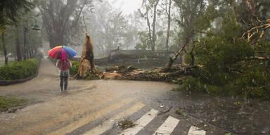 taifun56.jpg