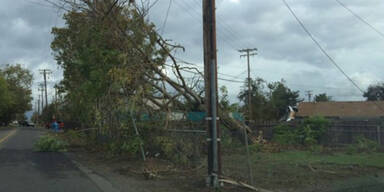 tornadot-4.jpg
