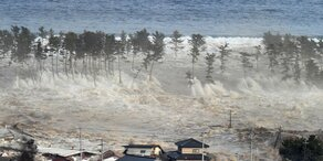 Tsunami-Warnung nach Erbeben der Stärke 7