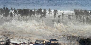 tsunami_epa.jpg