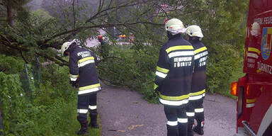 Unwetter - Sturmschaden in Türnitz