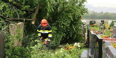 Umgestürzte Bäume verursachten am Friedhof von Großlobming