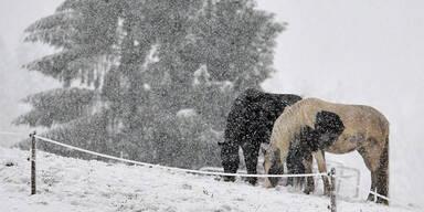 Wintereinbruch in Salzburg