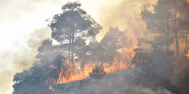 waldbrand-zypern.jpg