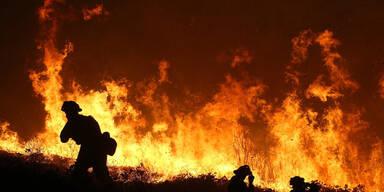 waldbrand.jpg