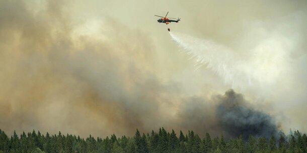 Gigantischer Waldbrand außer Kontrolle