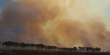 Waldbrand Italien