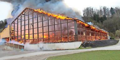 Pferde starben bei Brand in Leibnitz