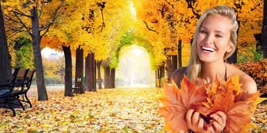 Bis zu 24 Grad: Jetzt kommt der 'Goldene Herbst'