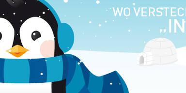 Pingu Gewinnspiel 2013 Header