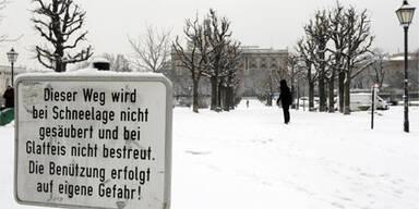 Wien Schnee