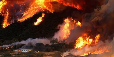 wildfire51.jpg