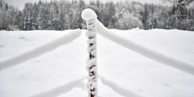 winter34.jpg