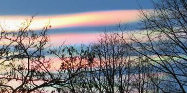 wolkenwien2.jpg