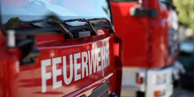 Hund starb bei Feuer-Drama in Innsbrucker Wohnung