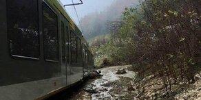 Mure lässt Zug entgleisen